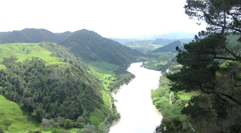 Whanganui River, New Zealand.